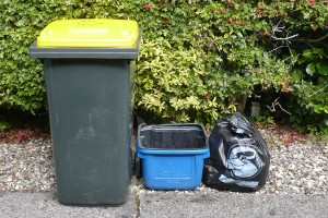Black-bins